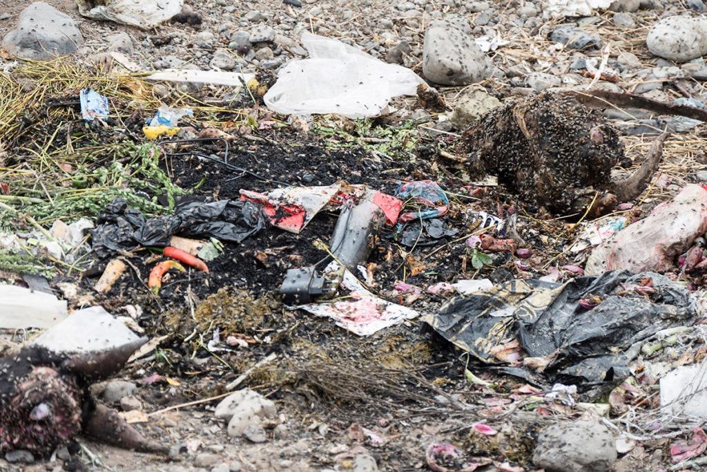 Schlachtabfälle und Müll