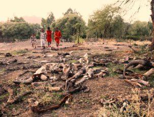 Kinder spielen zwischen Schlachtabfällen in Äthiopien