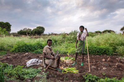 Bewässerung und Feldbau ist die langfristige Lösung gegen Hunger: Auch in Dürrezeiten gedeihen in den Gärten von Burtidas Mais und allerlei Gemüse.