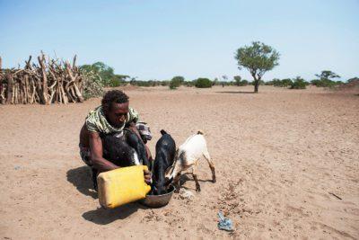 Salo Mujale aus Subuli ist von der Dürre aufgrund des El Niño-Wetterphänomens bedroht