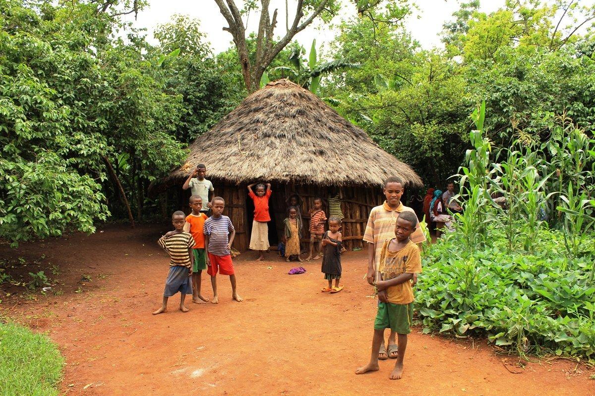 Kinder vor äthiopischer Hütte |