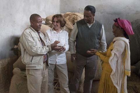 Kaffeebauern in Äthiopien: Mitglieder der Kaffee-Kooperative
