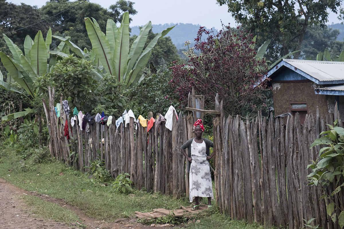 Wäsche am Gartenzaun
