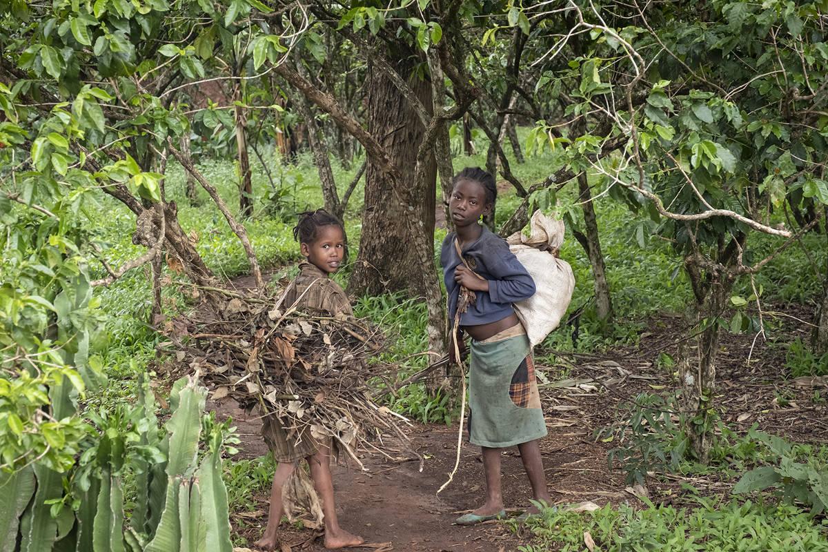 5_Mädchen beim Holzsammeln-213_17840_RKC5925_low_Menschen für Menschen-Äthiopien