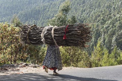 Brennholzträgerin