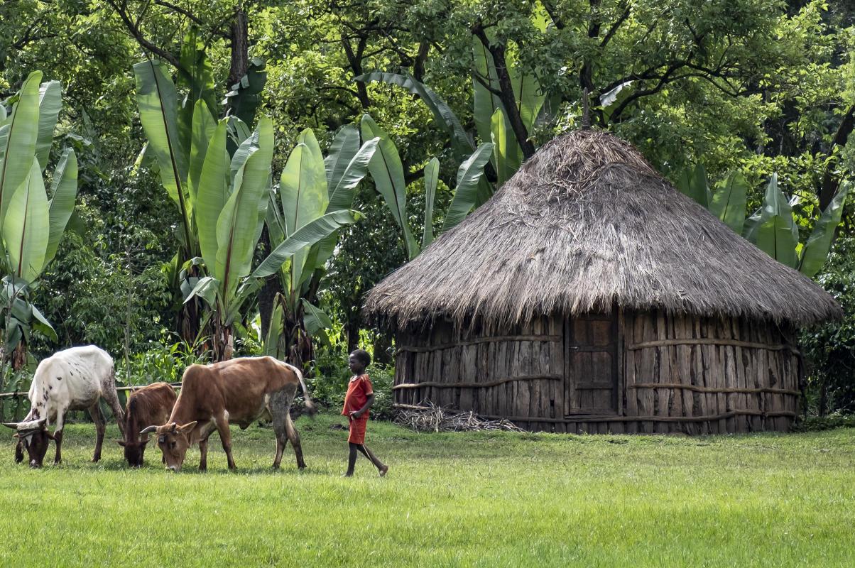 Tukul in Äthiopien | Stiftung Menschen für Menschen