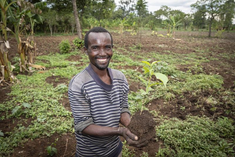 Bauer pflanzt Setzling | Stiftung Menschen für Menschen