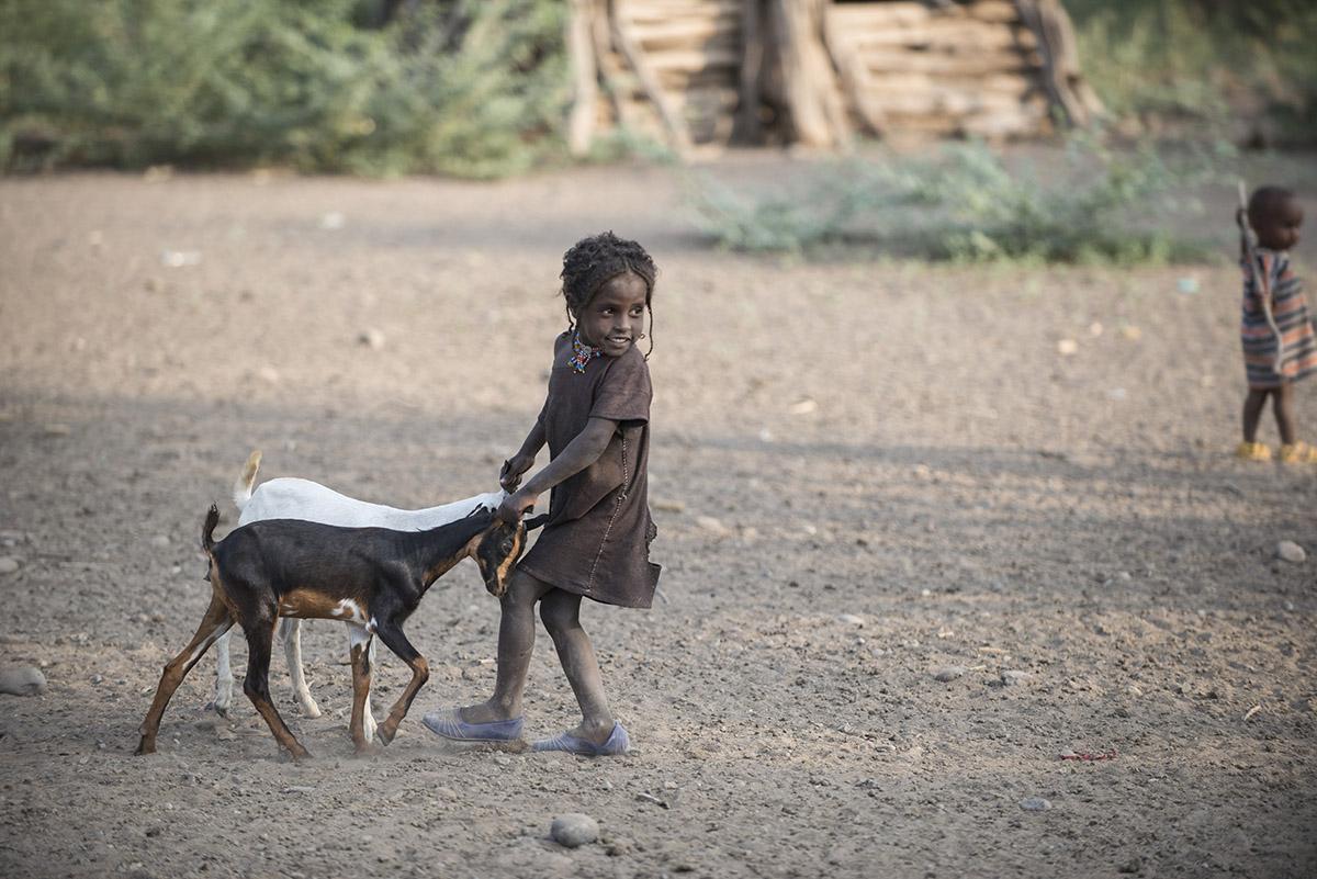 Mädchen treibt Ziegen zusammen