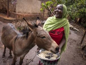 Mikrokreditnehmerin mit Esel