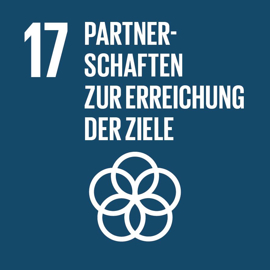 Ziel für nachhaltige Entwicklung Nr. 17
