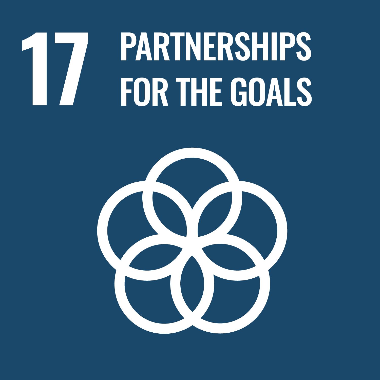 Sustainable Development Goal no. 17
